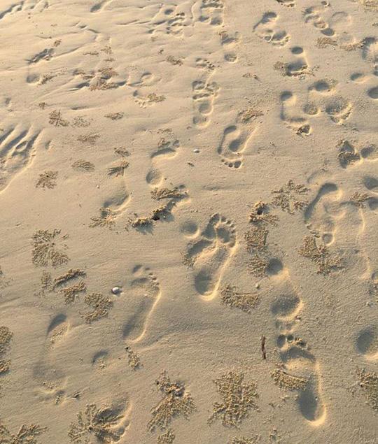 Stope-pijesak-fotogalerija